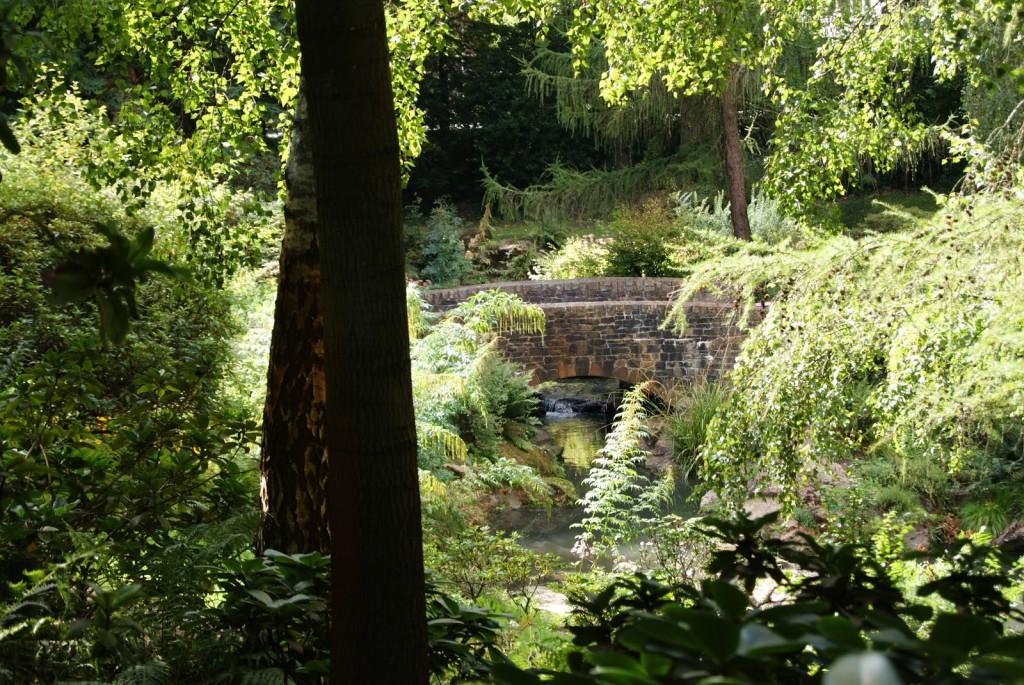 09 septembre 2010 parc de la Gaudiniere Nantes (23)