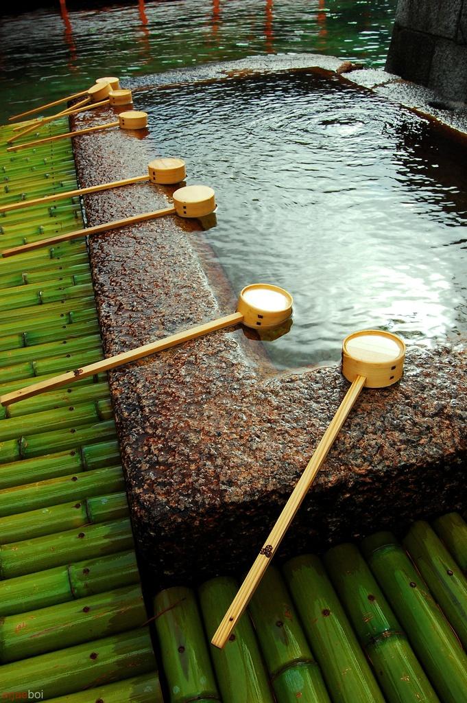 Shinto garden #japan