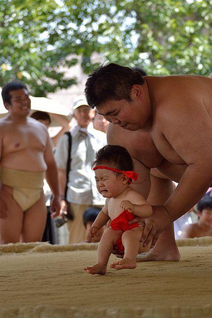 baby sumo festival